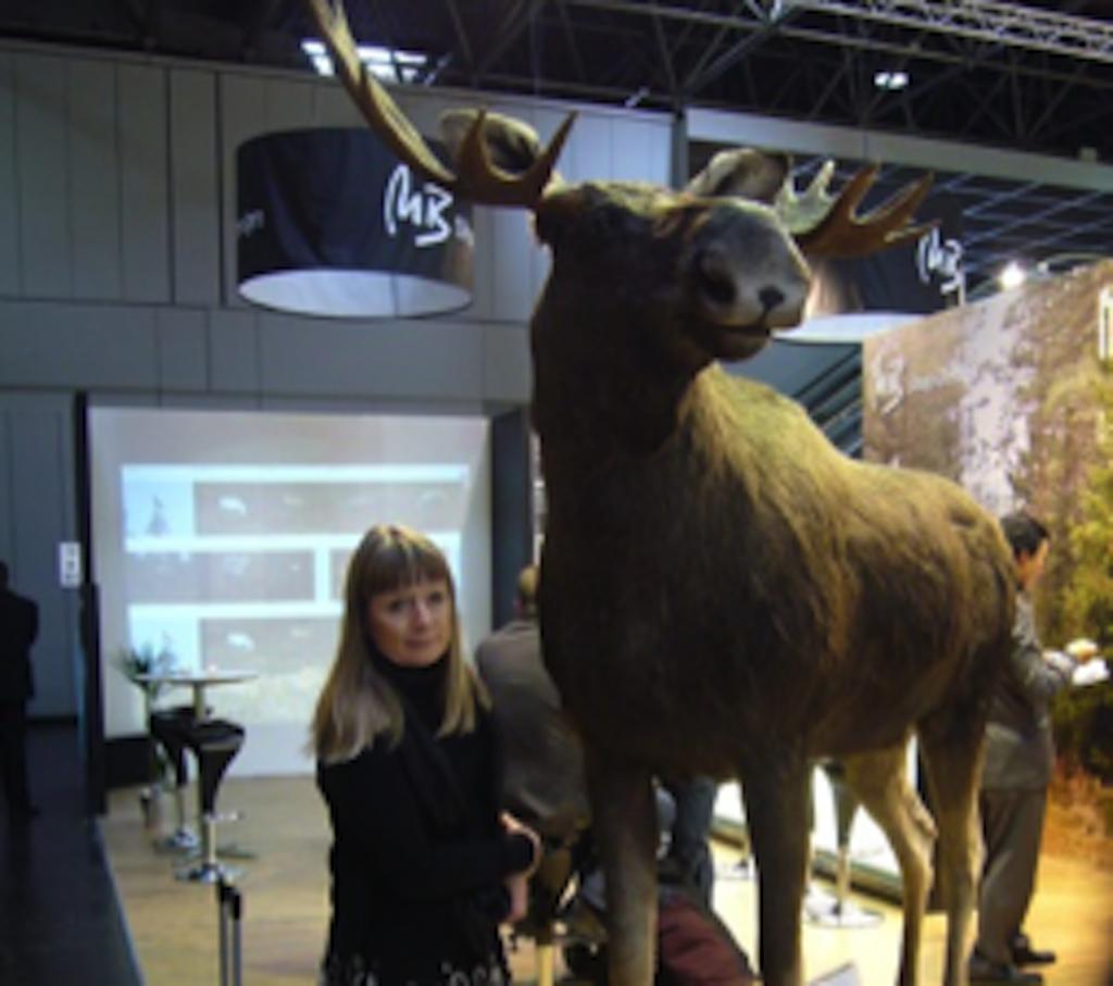 Haastattelussa: Visual Merchandiser Annika Hirvi